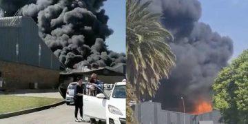 apex fire shield factory Benoni